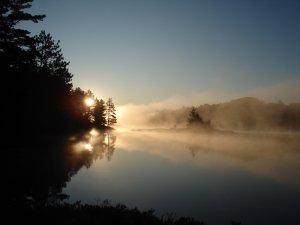 Killarney Mist