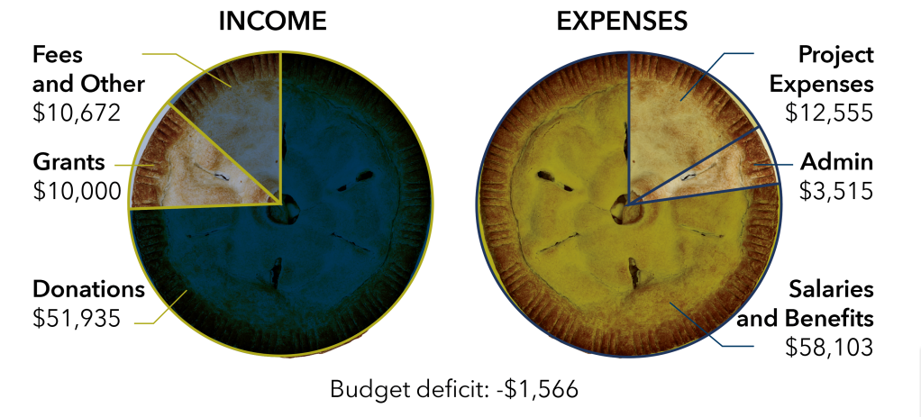 Income and Expenses Graphic
